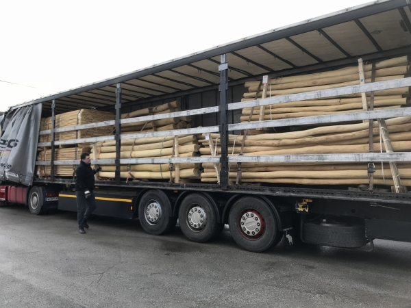 Robinia timber delivery